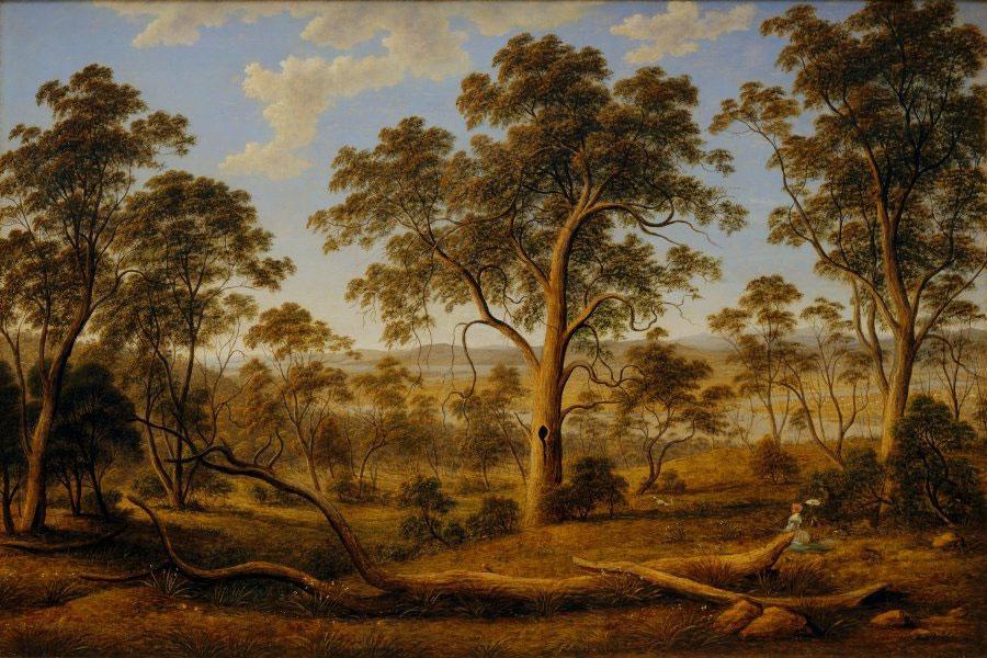 Launceston and the River Tamar